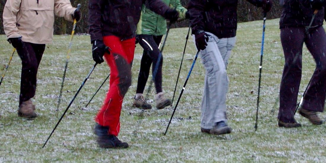 Nordic Walking Ger Top