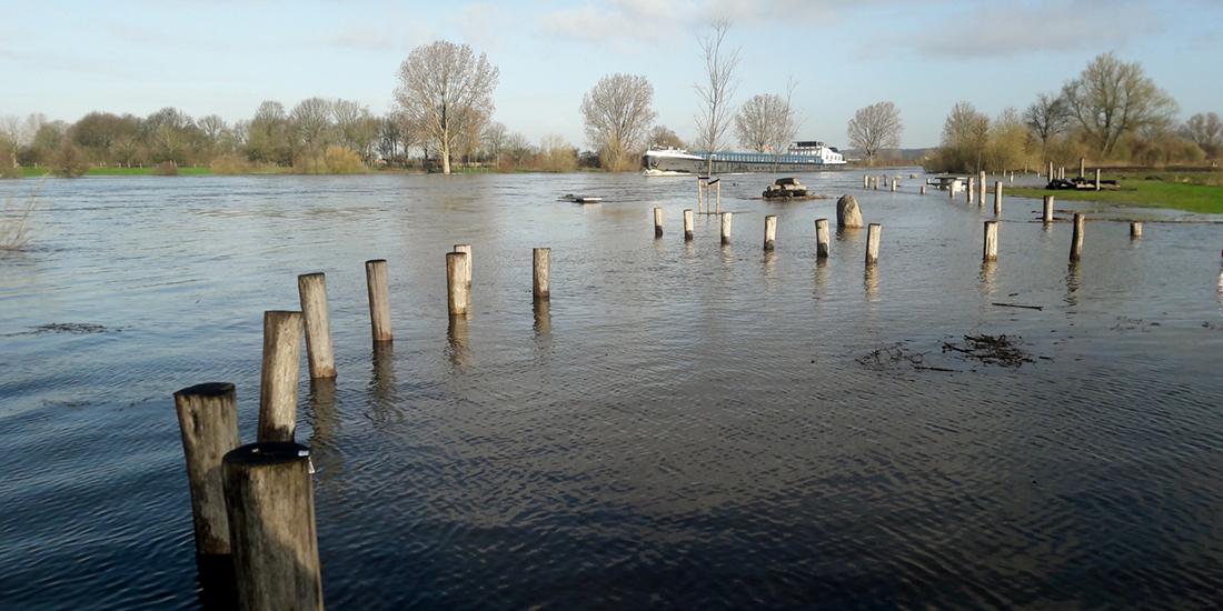 hoogwater Maas Gennep